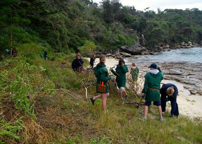 bush regeneration activities, outdoor education sydney