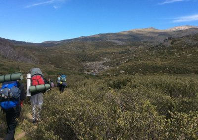 bush walking kosciuszko